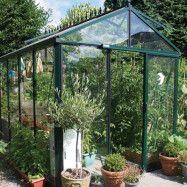 Växthus Oas Master 10,8 m², Victorian Svart